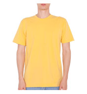 Custom American Apparel Organic Cotton T-Shirt