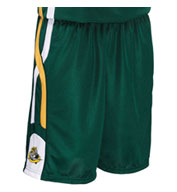 Custom Adult Helix 9 Inch Basketball Short Mens