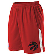 Custom Team NBA Toronto Raptors Adult Shorts