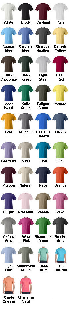 Hanes Short Sleeve Beefy T-Shirt - All Colors