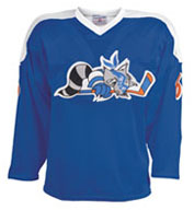 Adult Roller Mesh Hockey Jersey
